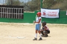 Little League Softball 2013